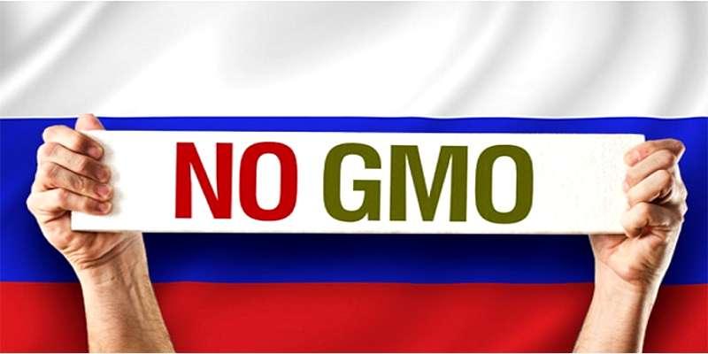 Rusija pirmoji pasaulyje uždraudė genetiškai modifikuotų produktų importą