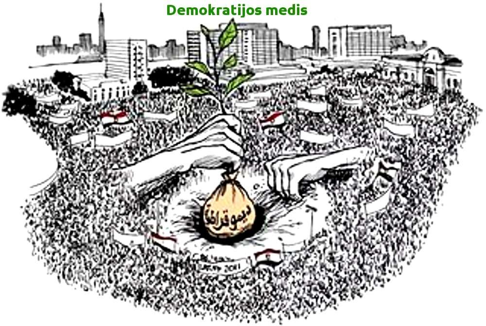 """""""Demokratijos pavasaris"""" Amerikoje (arba """"Amerika """"pirtyje""""...) - Video"""