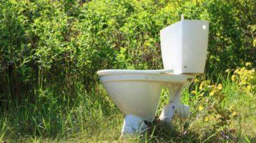 Naujas tyrimas atskleidė, kas sukelia 9 iš 10 kanalizacijos kamščių - problema didesnė, nei manote.