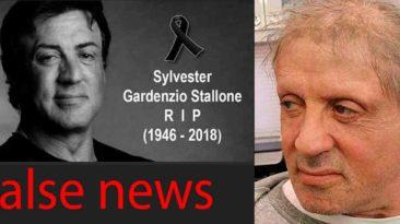 Internete paplito gandai apie S. Stallone mirtį.